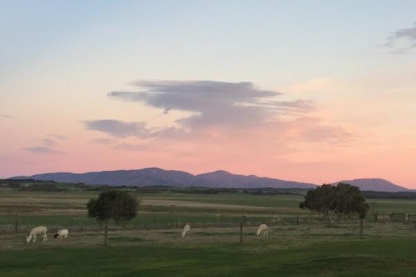 sunrise-at-promhills-1A049000E-43B5-A744-49F3-E6B6BA0D3F30.jpg