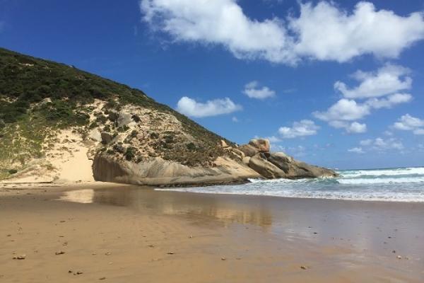 darby-beach82AAF1F6-F97A-10B1-A58E-3EFBE852CDF8.jpg