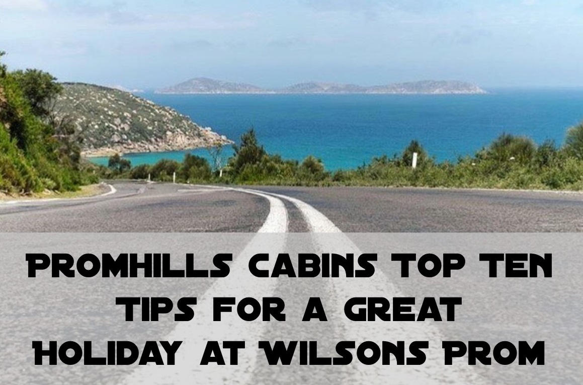 Top Ten Tips for Wilsons Prom