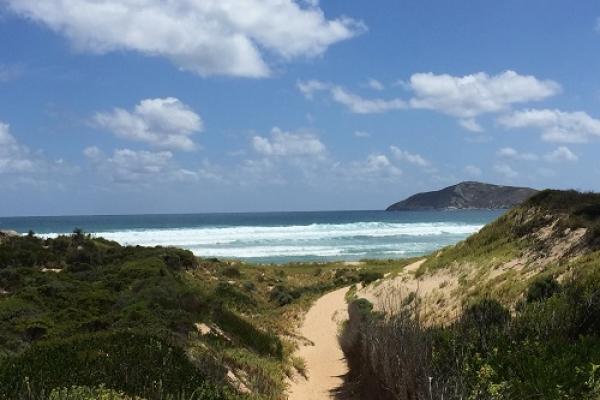 darby-beach-walk99070430-E5E3-9BE5-FB21-A87BA72B7F90.jpg